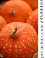 南瓜 橙色 橘子 24500030