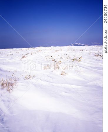 多雪的領域和藍天 24500734
