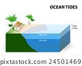 Ocean Tides 24501469