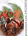 秋天的图像 24520053