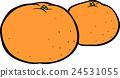 mandarin orange, mikan, citrus fruits 24531055