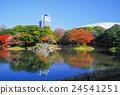 코이시카와코라쿠엔, 고이시카와코라쿠엔, 단풍 24541251