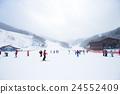 冬季運動 冬 冬天 24552409