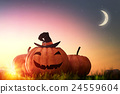 pumpkin and hat witch on sunset 24559604
