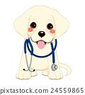 Dog Vet Stethoscope 24559865