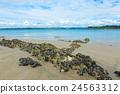 海濱 沙灘 布列塔尼 24563312