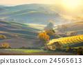 Morning Autumn landscape -  fall season , sunshine 24565613