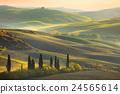 Fresh Green tuscany landscape 24565614