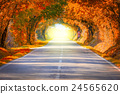 Autumn Fall Road landscape  24565620