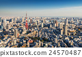 Skyline of Tokyo Cityscape with Tokyo Tower 24570487