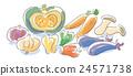 蔬菜 各種各樣 紅辣椒 24571738