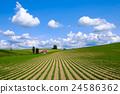 藍天 白雲 綠地 24586362