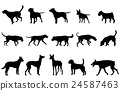 dogs collection silhouettes 24587463