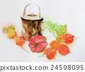 白底 紅辣椒 酸漿果 24598095