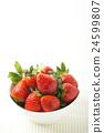水果 草莓 有機農場 24599807