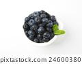 藍莓 水果 照片 24600380