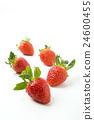 水果 草莓 物體 24600455