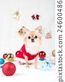 動物 小狗 狗狗 24600486