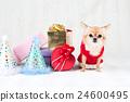 狗 動物 禮物 24600495