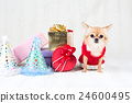 狗 动物 礼物 24600495
