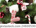 靴子 树 树木 24600590