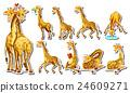 set, wildlife, giraffe 24609271
