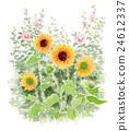 花朵 花卉 花 24612337