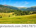 landscape, mountain, forest 24617873