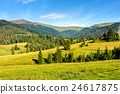 landscape, mountain, forest 24617875