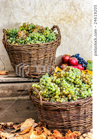 autumnal still life with fruit and leaves 24619205