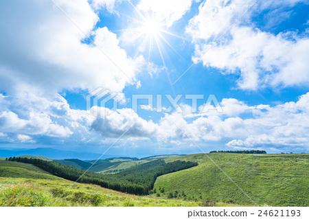 [長野縣]山的自然風光[夏天] 24621193