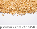 Soybeans for copy space on a white 24624583
