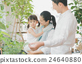shoping, foliage plant, shopping 24640880