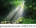 瀑布 光束 旅遊勝地 24653414