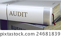 Audit. Book Title on the Spine. 3D Illustration. 24681839