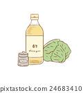 醋 甘藍 包菜 24683410