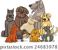 purebred dog characters group 24683978