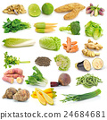 set of vegetable on white background 24684681