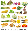 set of vegetable on white background 24684683