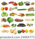 set of vegetable on white background 24684773
