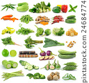 set of vegetable on white background 24684774