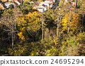 Autumn colorful trees and family houses 24695294