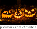 Photo of three pumpkins for Halloween. 24696611