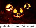 Pumpkin halloween 24696643