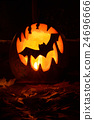 Bat on Halloween pumpkin 24696666