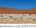 View from Dead Vlei, Namibia. Red dunes 24697079