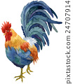 rooster, locally raised chicken, chicken 24707914