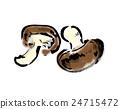 표고 버섯 24715472