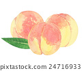 peach, watercolour, watercolors 24716933