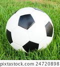 soccer ball on green grass 24720898